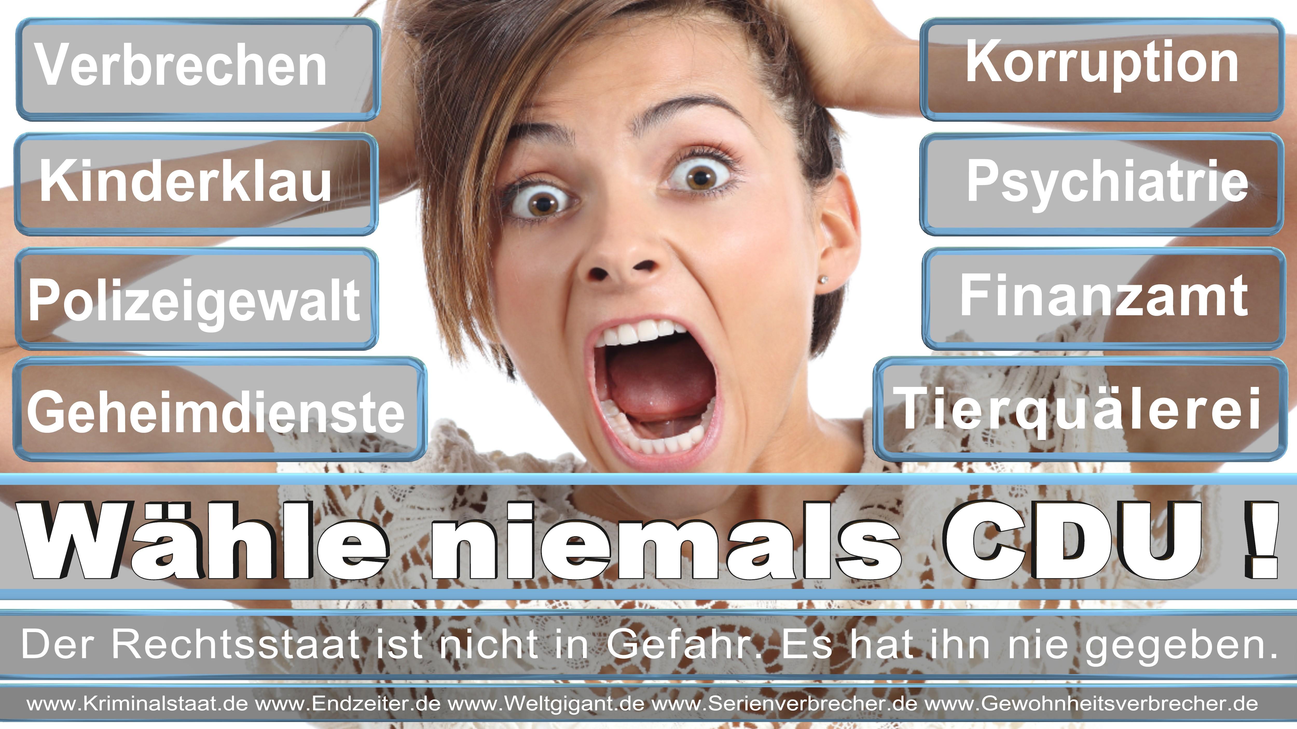 Bundestagswahl 2017 CDU SPD FDP AfD NPD Piratenpartei Wahlplakat Wahlplakate (1)