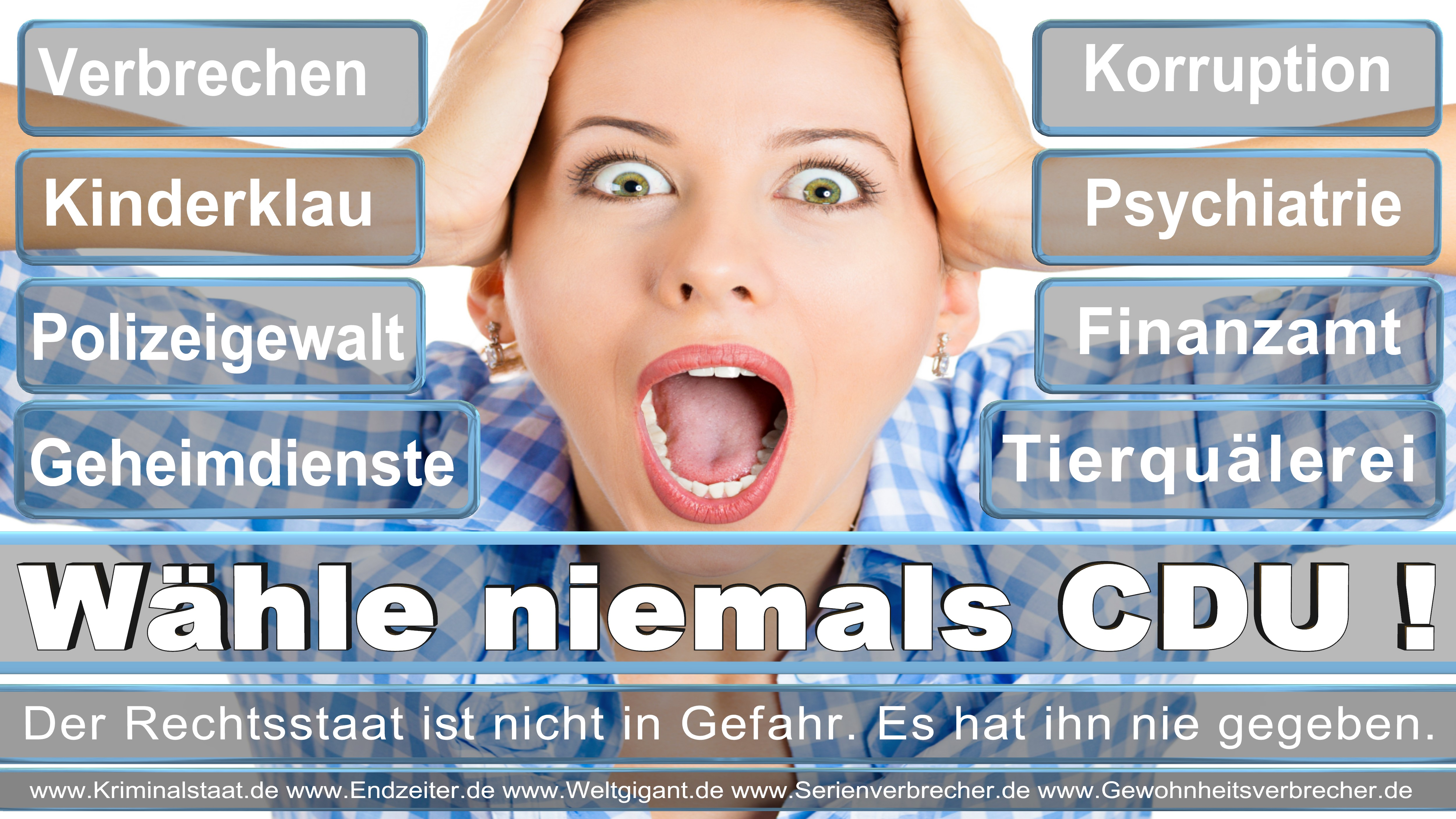 Bundestagswahl 2017 CDU SPD FDP AfD NPD Piratenpartei Wahlplakat Wahlplakate (4)