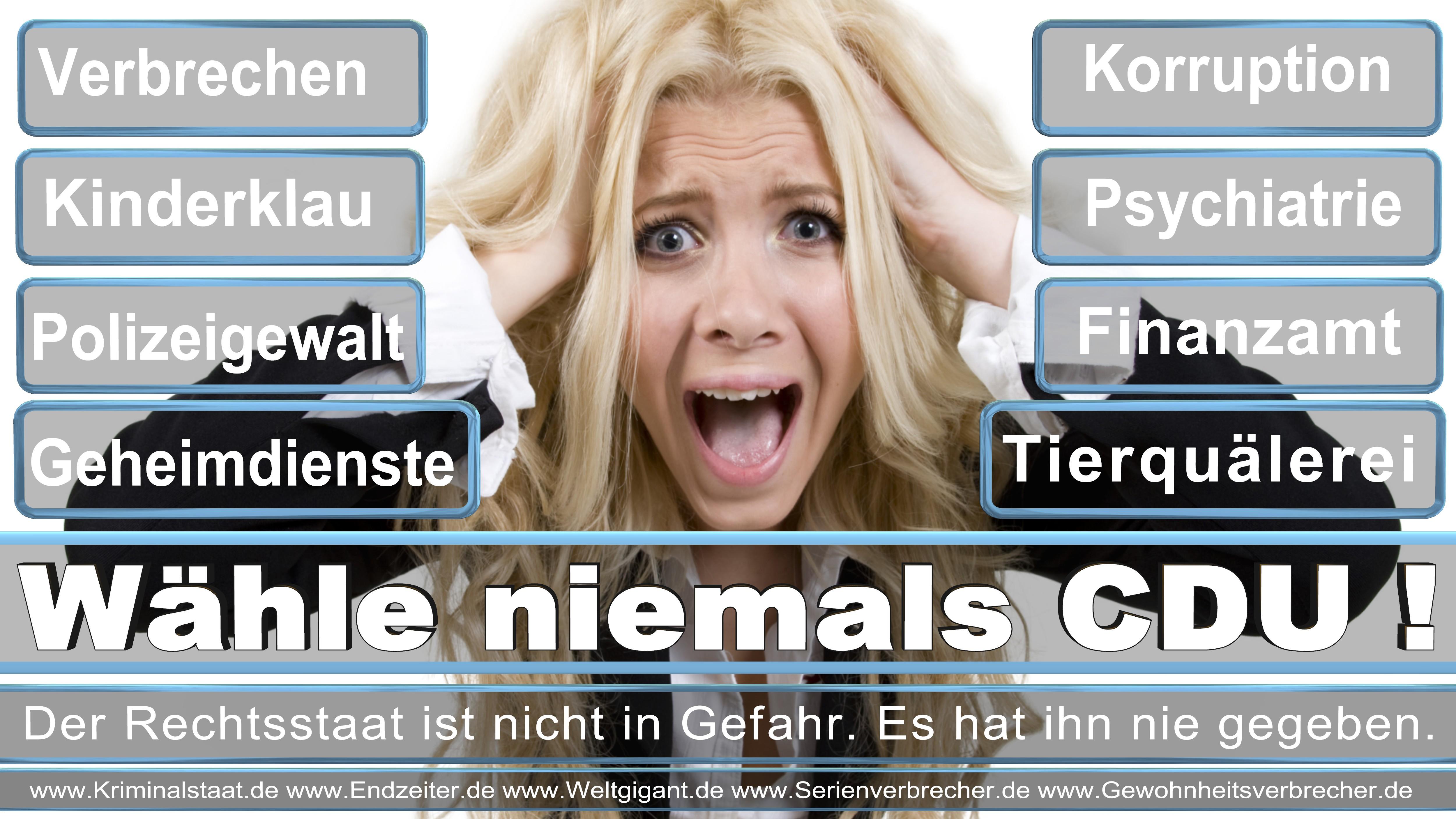 Bundestagswahl 2017 CDU SPD FDP AfD NPD Piratenpartei Wahlplakat Wahlplakate (5)
