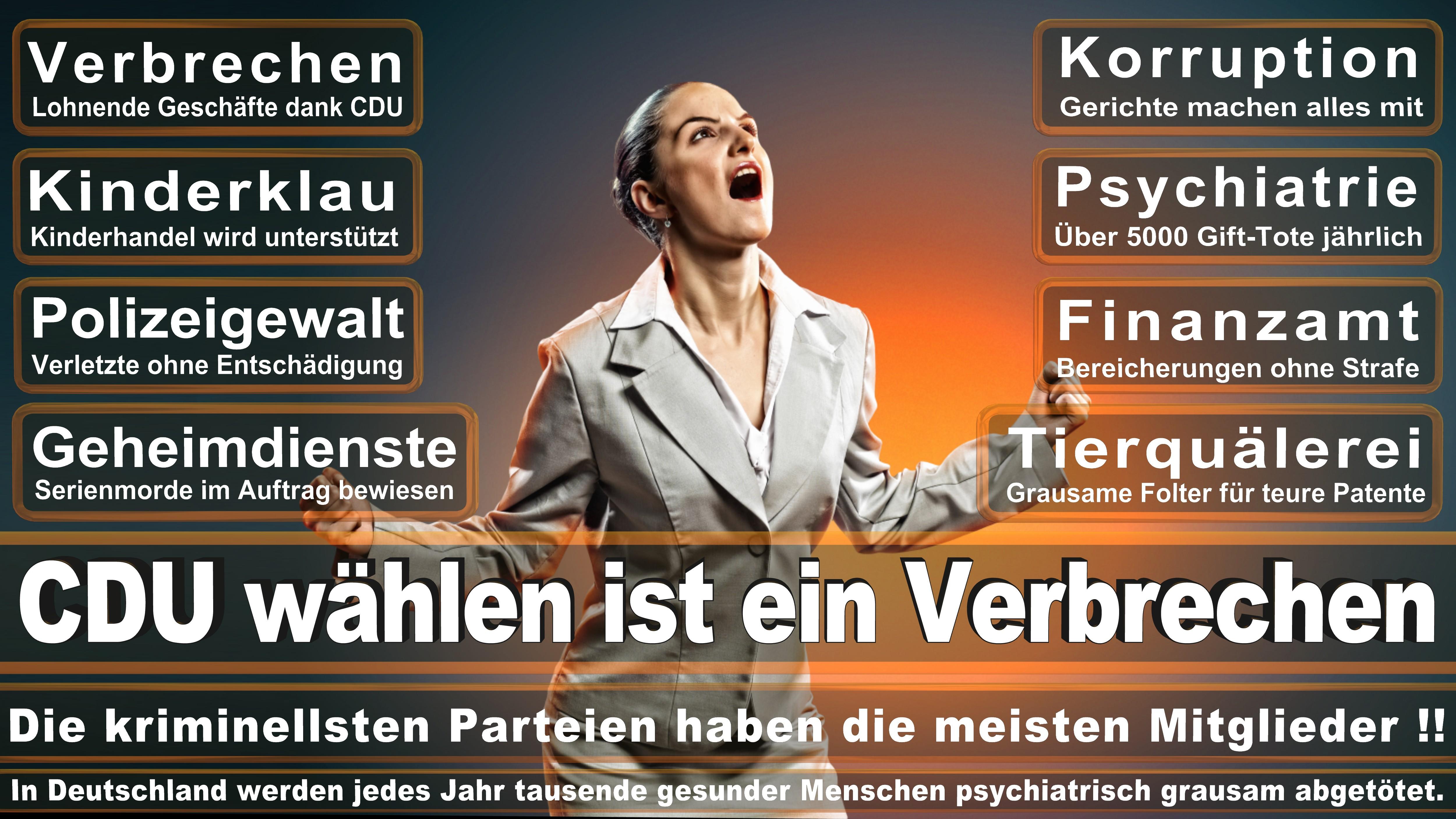 CDU Bielefeld, Vorstand, Ratsmitglieder, Ortsverband, Andreas Rüther, Mike Krüger, Michael Weber, Lena Strothmann, Vincenzo Copertino, Elmar Brok, Ralf Nettelstroth, Detlef Werner, Marcus Kleinkes (8)