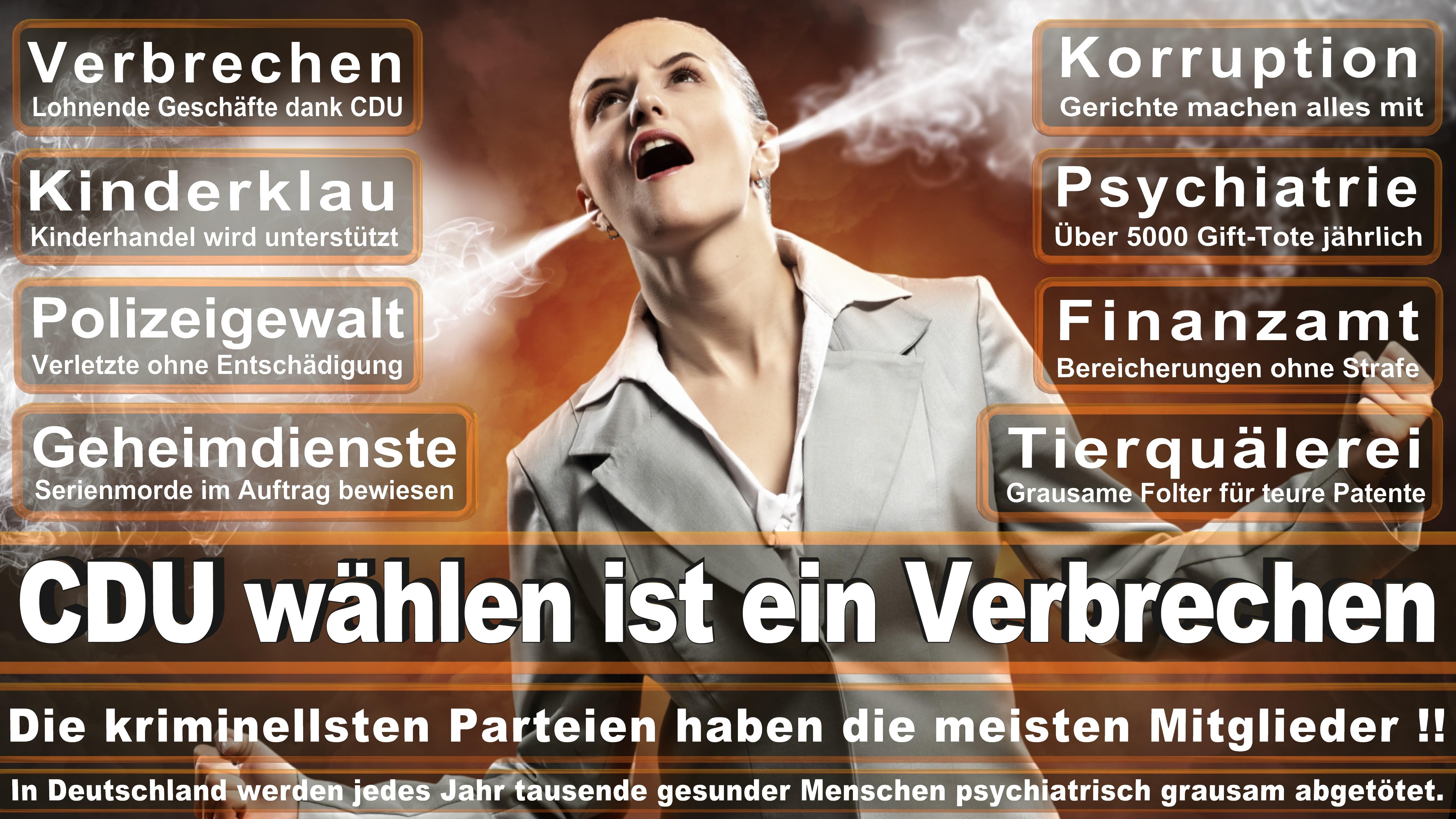 CDU Bielefeld, Vorstand, Ratsmitglieder, Ortsverband, Andreas Rüther, Mike Krüger, Michael Weber, Lena Strothmann, Vincenzo Copertino, Elmar Brok, Ralf Nettelstroth, Detlef Werner, Marcus Kleinkes (9)