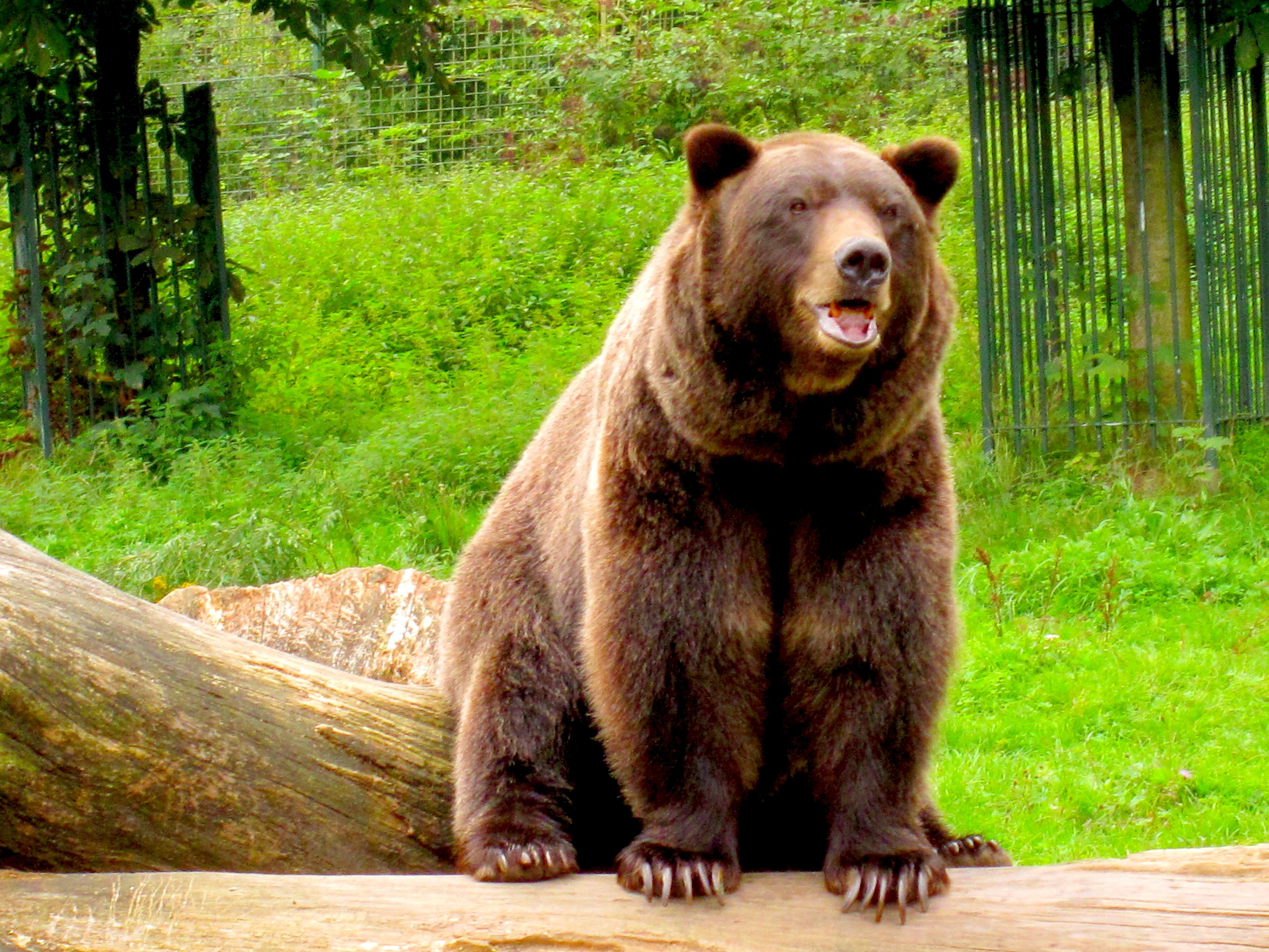 Tierpark Bielefeld Olderdissen (10)