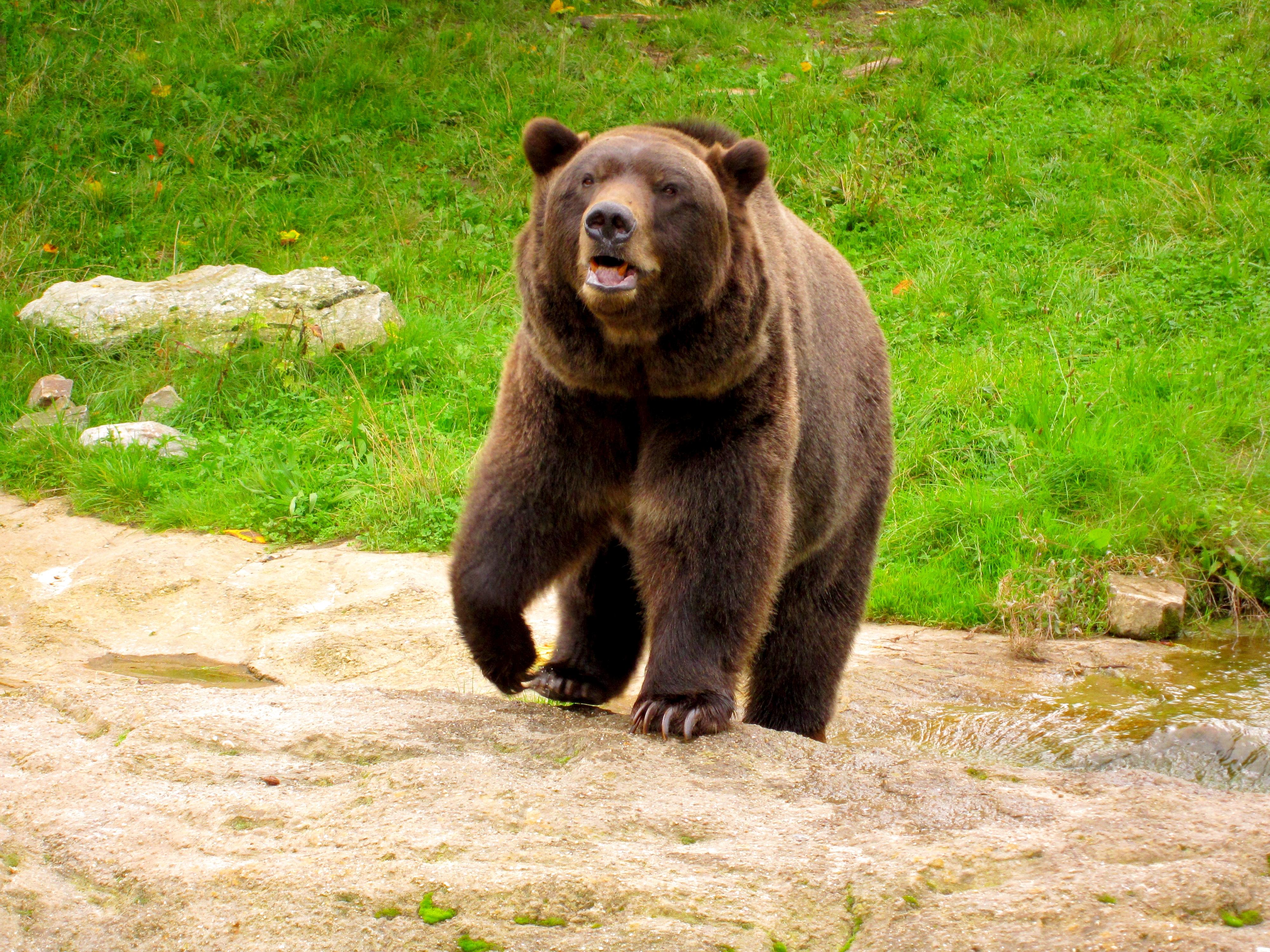 Tierpark Bielefeld Olderdissen (12)