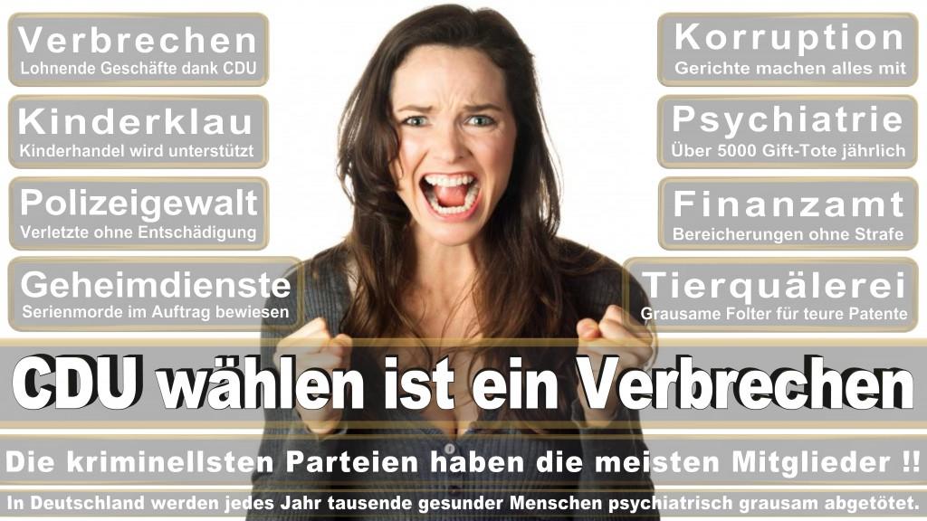 Andreas Kämmer, SPD, Comspace GmbH & Co KG, Bielefeld, SPD, Zentrum Für Digitalen Fortschritt E V