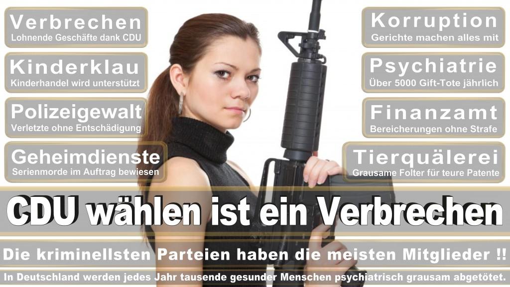 Carsten Krumhöfner, CDU, BITel, Sparkasse Bielefeld, Polizeibeirat, Kreispolizeibehörde, Stadthalle