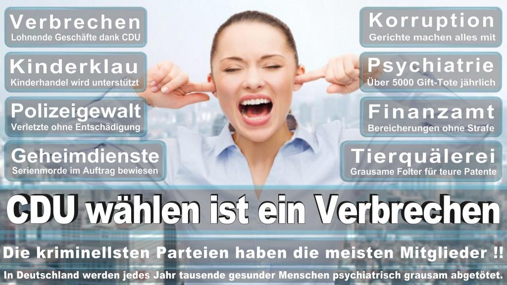 Christoph Harras Wolff, CDU, Dr Kurt Wolff GmbH & Co KG, Arzneimittel, Dr August Oetker, Rechtsanwalt