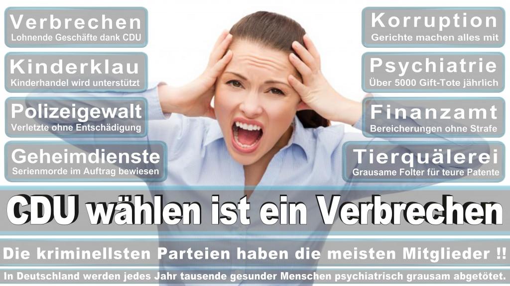 Detlef Werner, CDU Ratsfraktion Bielefeld, Klinikum, Radio Bielefeld, Kunsthalle, Gildenhaus E V, Eisenwerk