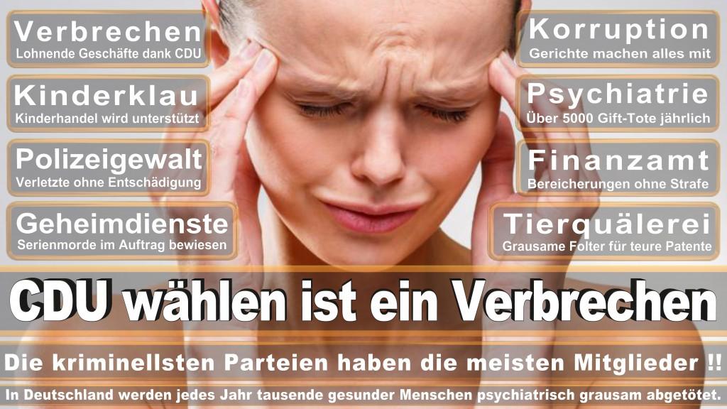 Uwe Werner CDU, Meister Werner Für Ihre Sicherheit , Herford, Deutschland, CDU Stadtverband Vlotho
